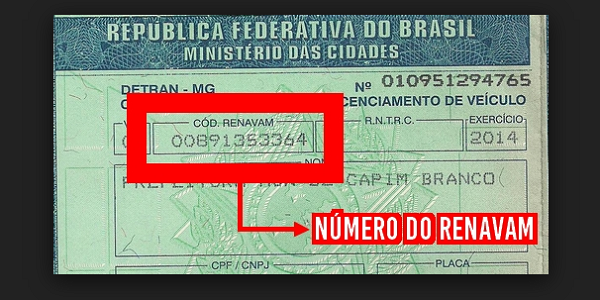 Número do RENAVAM 2019